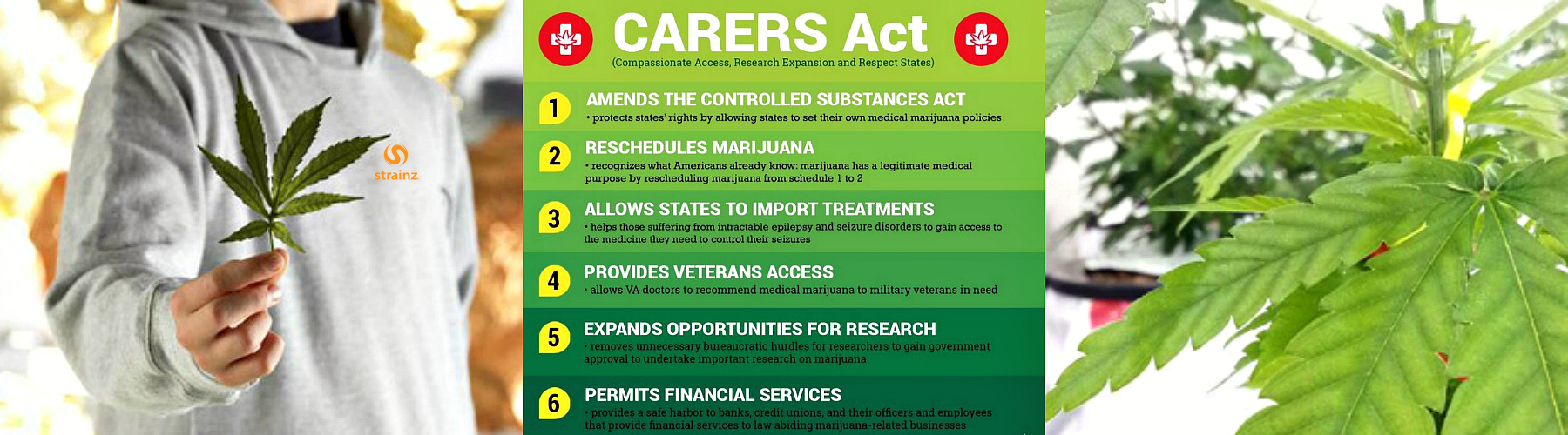 Carers Act Image
