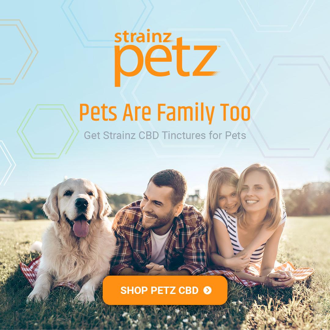 CBD for Pets creative