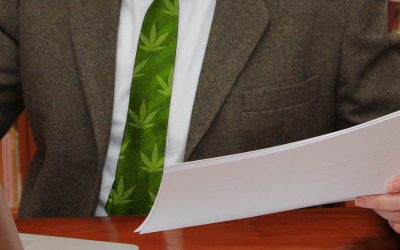 Vicente Sederberg Law Firm Finds Opportunity in Legal Cannabis Industry